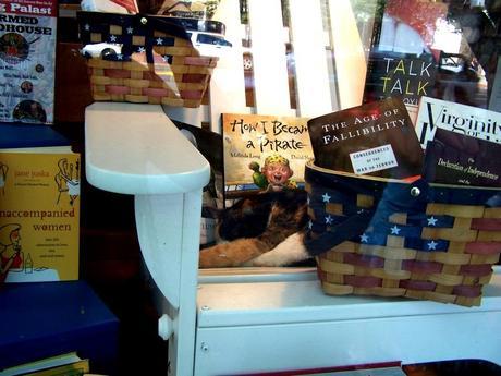 cat in window of BookHampton store in East Hampton NY