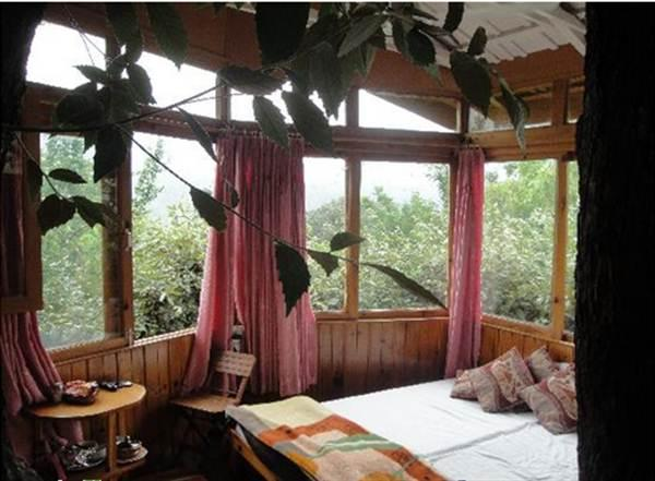 Rooms - Tree House Cottage