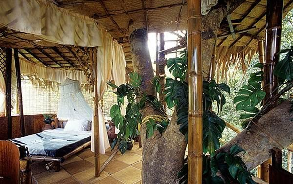 Rooms - Tree House in Green Magic Nature Resort