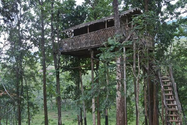 Tree House in Green Magic Nature Resort, Kerala
