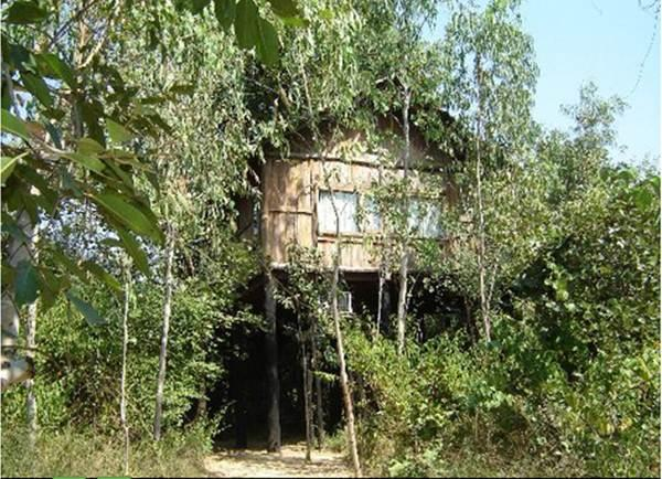 Tree House Hideaway in Bandhavgarh