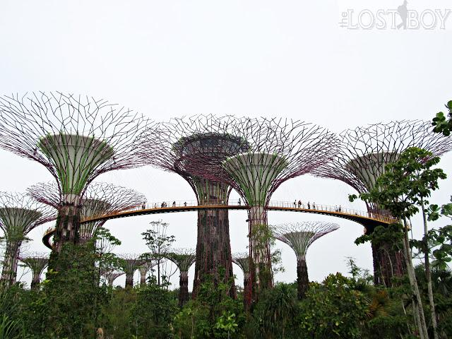 Singapore's Gardens by the Bay: My First Time