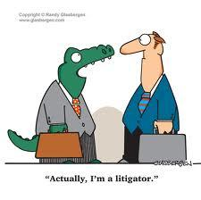 Legal Series- Things to think about with your Lawyer