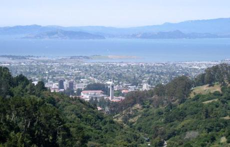 View of SF Bay from Berkeley Fire Trail
