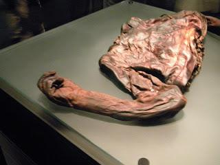 Irish Bog Bodies