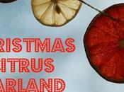 Christmas Citrus Garland