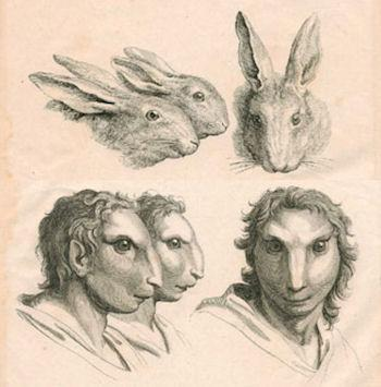 Physiognomy Of Humans And Animals
