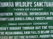 Chinnar Wildlife Sanctuary, Idukki