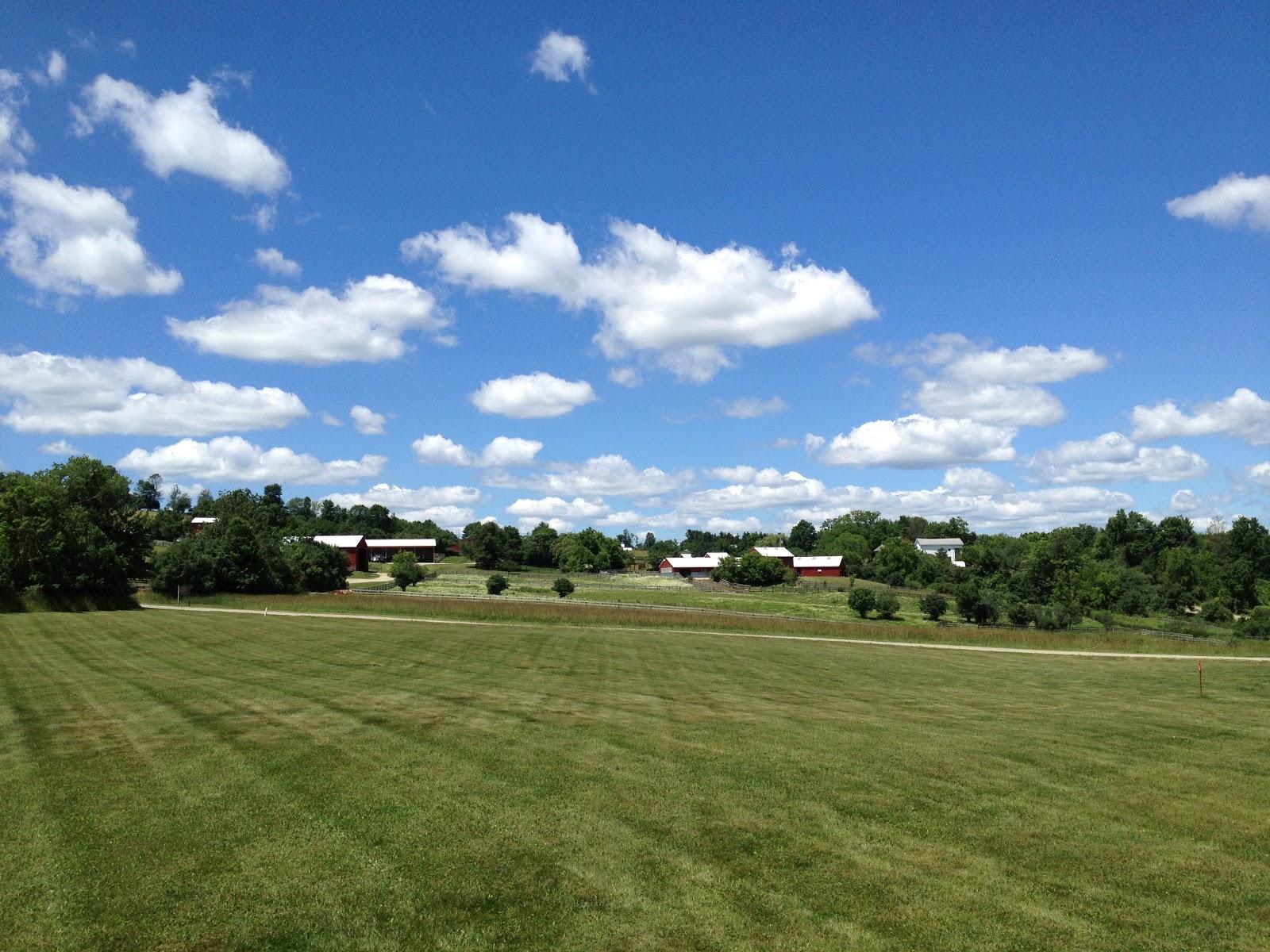 Farm Sanctuary Animal Rescue - Paperblog