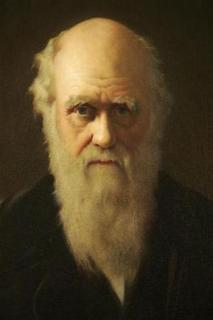I need a picture of Darwin happy to be vindicated yet again