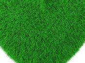 True Artificial Grass Really Eco-friendly
