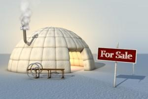 winter-for-sale_500