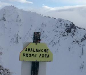 Avalanche Prone Area