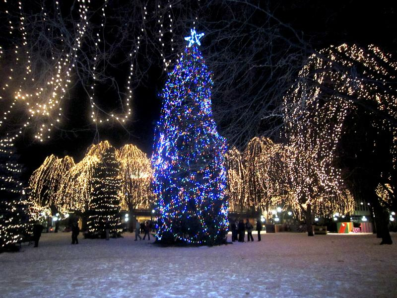 Where Are the Best Christmas Light Displays in the Twin Cities ...
