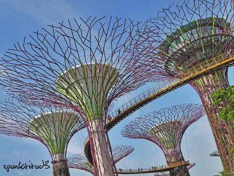 Gardens by the Bay - SuperTrees