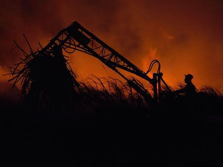 Picture of a farm worker silhouetted against a controlled blaze in Puerto Rico