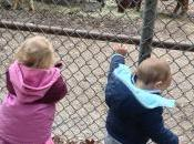 Sibling Relationships: Baby Dunk Little Miss Adorable