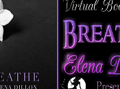 Tour Stop Review: Breathe Elena Dillon