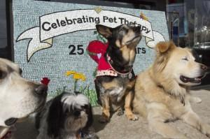 Therapy dog program celebrates 25 years