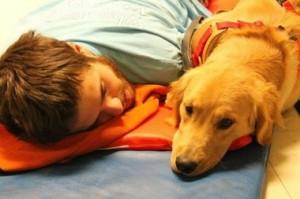 Man's new dog can foretell his seizures