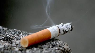 Have We Killed Half of our Soldiers with Cigarettes?
