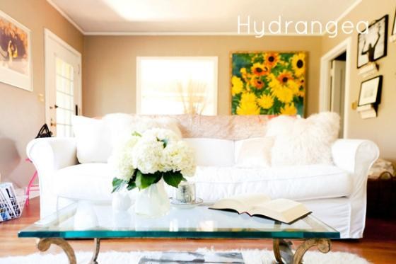 NookAndSea-Samantha-Could-I-Have-That-Blog-Santa-Barbara-Hydrangeas-Flowers-House-Tour-Glitter-Guide