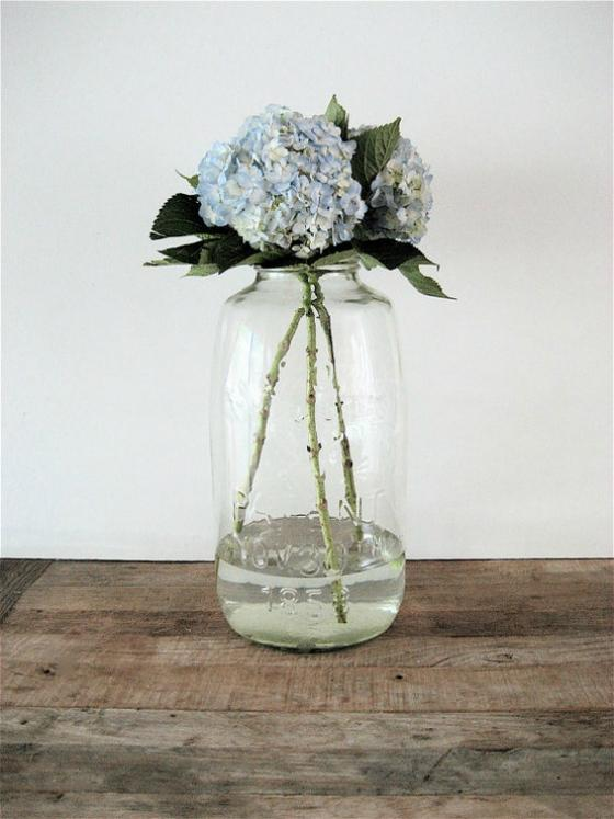 NookAndSea-Mason-Jar-Clear-Hydrangea-Flower-Bloom-Blue