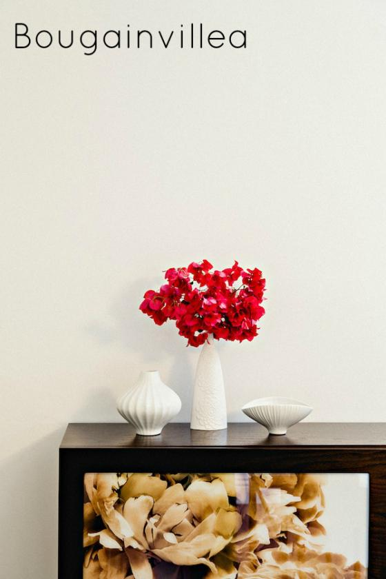 NookAndSea-Style-At-Home-Glitter-Guide-Jennifer-McGarigle-White-Vase-Bouganvilla-Flowers-Red-Bright-Bold-Colorful