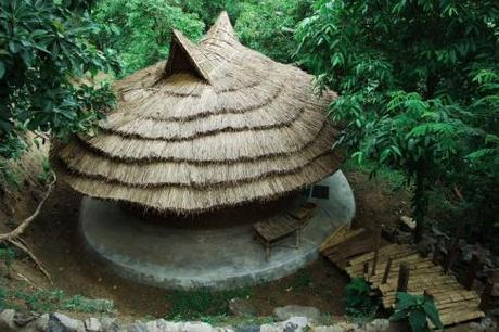 Tribals in Wayanad set an example in eco-conservation