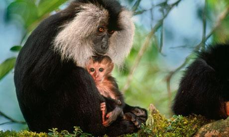 Western Ghats Biodiversity expo from Friday