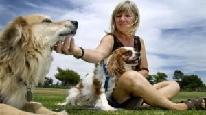 Dog rescuer boasts high success rate