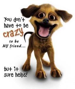 crazy 255x300 Offending Mental Health   I Am A Crazy Bipolar