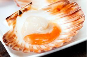dukan-attack_scallops