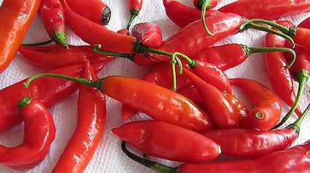 What Is The Hottest Pepper In The World?