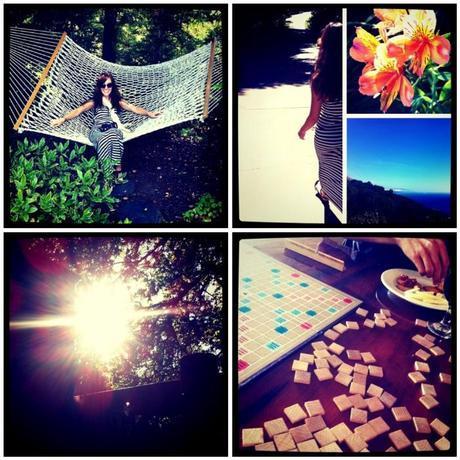 weekend snapshots.