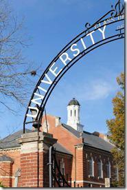 Review: University (Theatre Momentum)