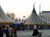 Cirque Soleil Seoul