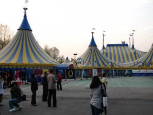 Cirque Du Soleil in Seoul