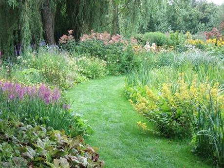 A Watery Gem of a Garden