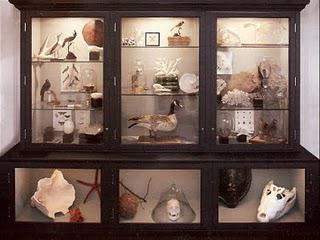 Monday's Cabinet of Curiosities.
