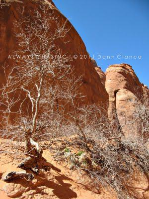 2011 - March 23rd - Sand Dune, Broken & Tapestry Arches, Arches National Park