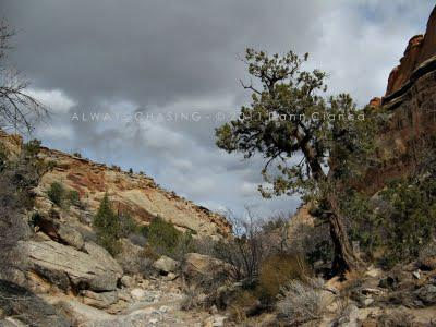 2011 - March 8th - Echo/No Thoroughfare Canyons, Colorado National Monument
