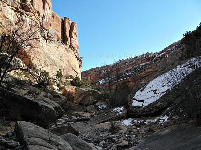 2011 - January 25th - Echo Canyon - Colorado National Monument