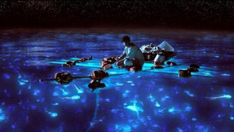 'Life of Pi' inspires government's tourism campaign