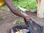 Muzungu's Best 2012!