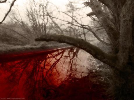 suicide trees blood water 1 1024x768 Depression Stopping Me Bonding With My Kids