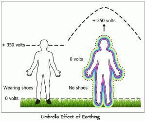 Come To Your Senses through Grounding