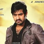 jr-ntr-baadshah-wallpapers-pics-photos-images-gallery-album