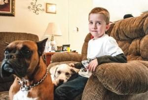 Lost boy kept warm by dogs
