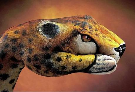 unbelievable animals painted on hands L 8ehySZ - Amazing Hand art